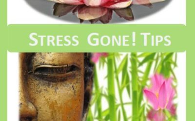 Season's Greetings Stress Gone! Tips